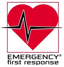 Emergency First Response (EFR) First Aid/CPR courses from provider to instructor level. Adult & Care for Children courses with Scuba in the Weald based in Kent