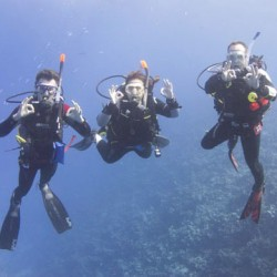 PADI divers enjoying the wonders of the Red Sea!